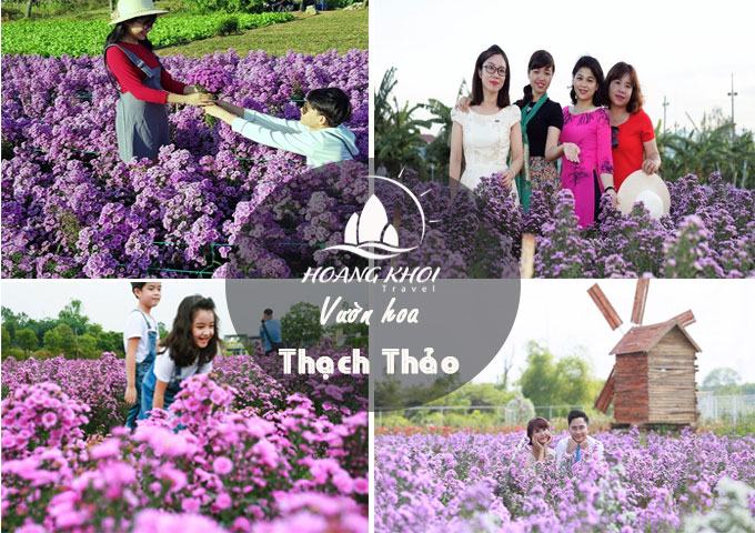 tour-vung-tau-2-ngay-1-dem-gia-re-12