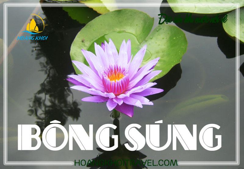 bong-sung-hoang-khoi-travel