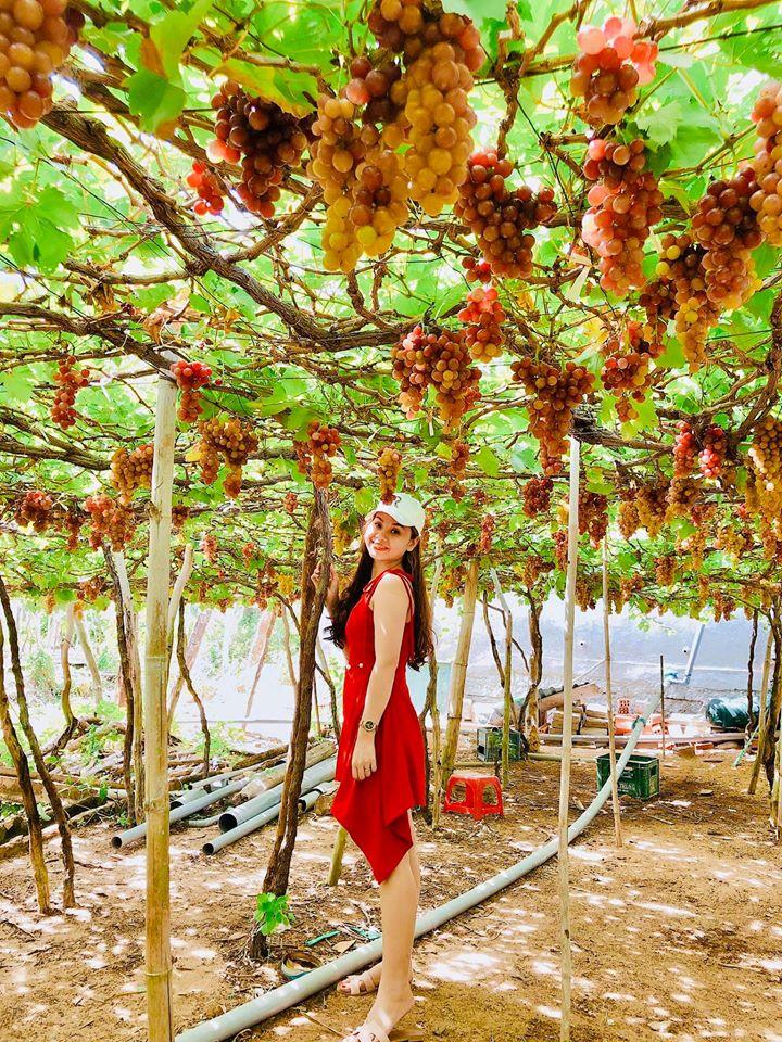 Vườn Nho - Tour đảo Bình Ba 2N2Đ